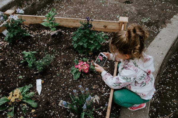 Farm Class for kids is the best way to get your kids involved in all things veggies.