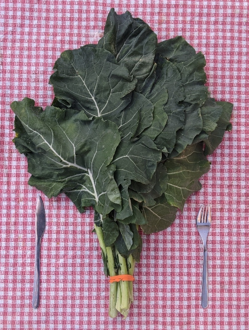 Broccoli Leaves are number 3 on the healthiest leafy greens list.