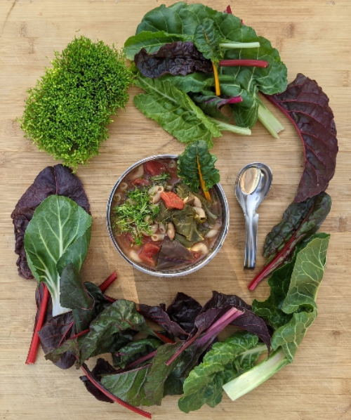 One-Pot Swiss Chard Soup Recipe to Warm the Soul