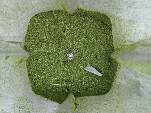 Put all your greens in a Vitamix for the greens powder recipe.