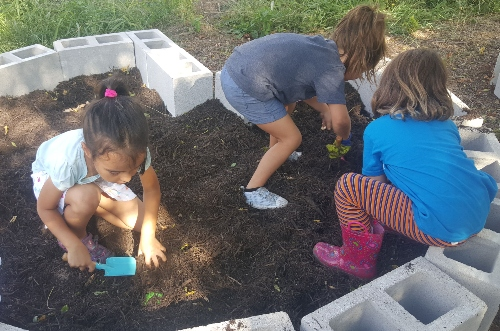 Children gardening together.