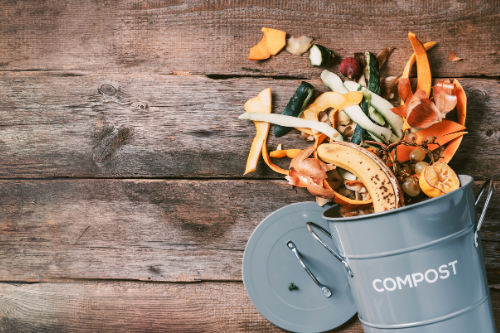 Composting for Beginners: Why You Should and How To Do It