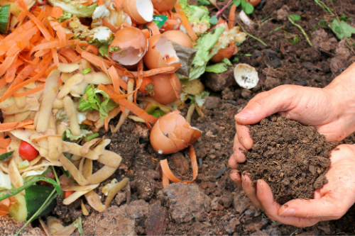 What to compost.