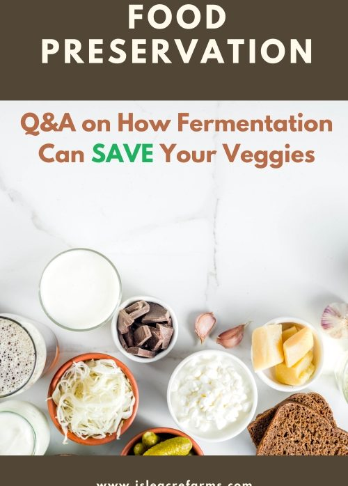 Fermentation as a Food Preservation Method: How to Save Your Veggies