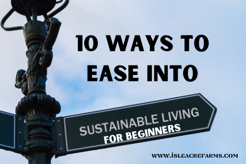 Sustainable Living for Beginners: 10 Ways to Ease Into It