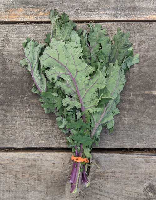 Kale is number 4 on the healthiest leafy greens list.