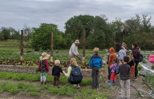 Come see where your food is grown at one of our farm tours.